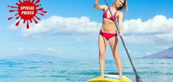 Paddle Boards Rental